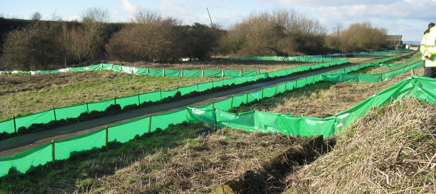 Temporary great crested newt fencing at Avonmouth Docks