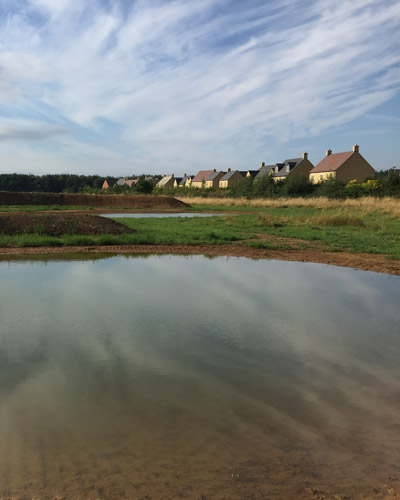 Great crested newt pond as part of wildlife mitigation on a housing development in Moreton-in-Marsh