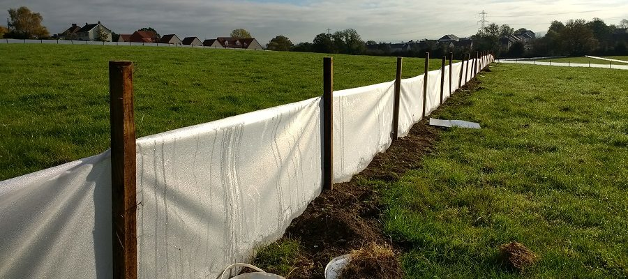Temporary clear newt fencing