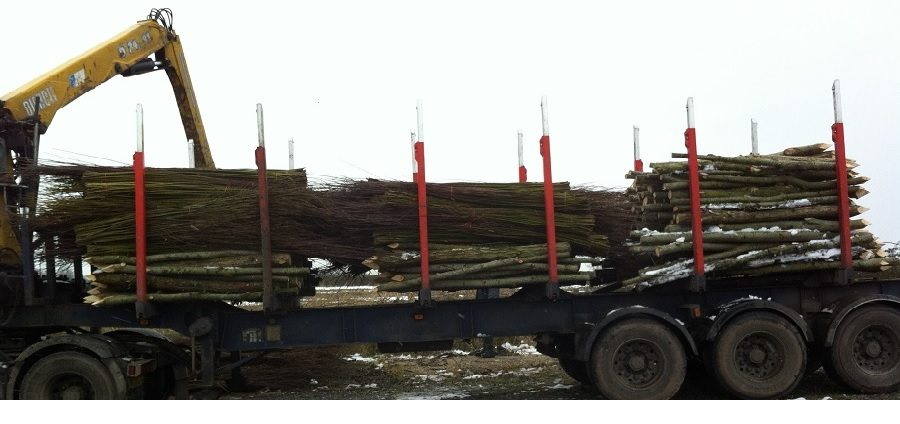 Willow spiling material being loaded for delivery