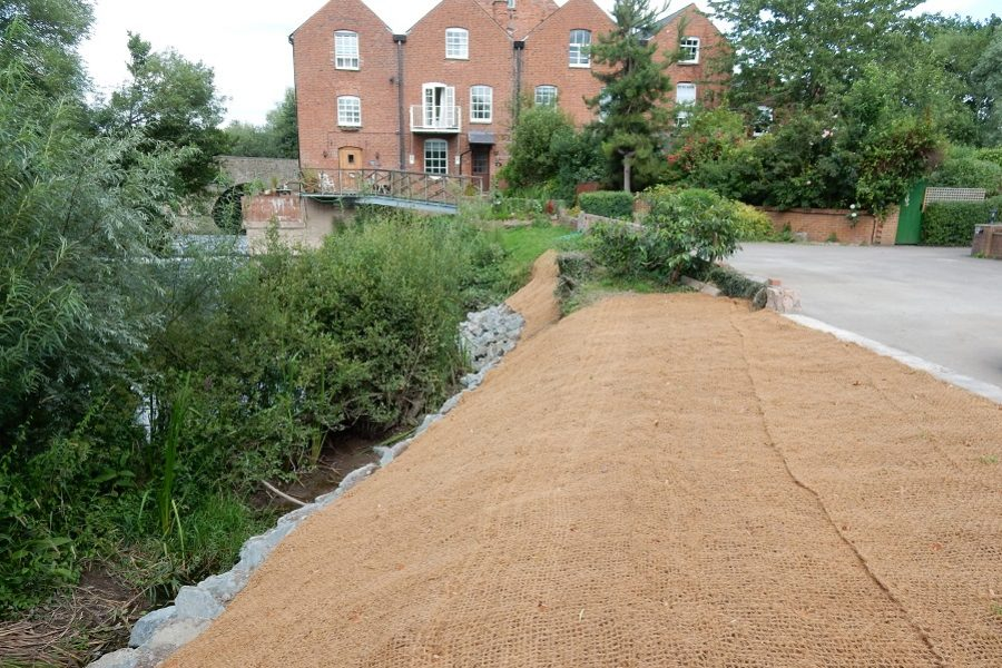 Coir matting laid over a regraded river bank to control erosion