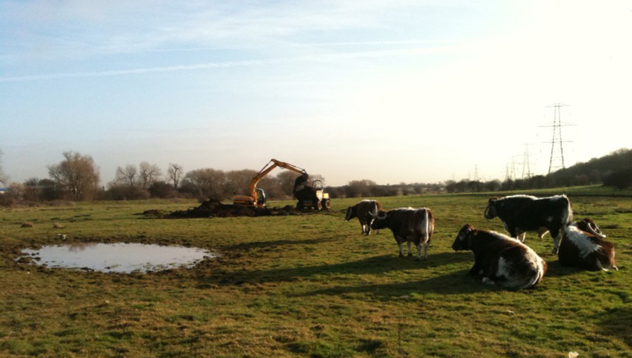 Earthworks for wildlife pond for Birmingham Wildlife Trust