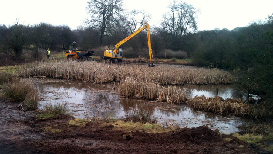 Vegetation clearance for wildlife pond for Birmingham Wildlife Trust