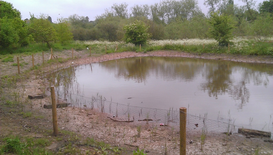 Newly constructed wildlife pond for Birmingham Wildlife Trust