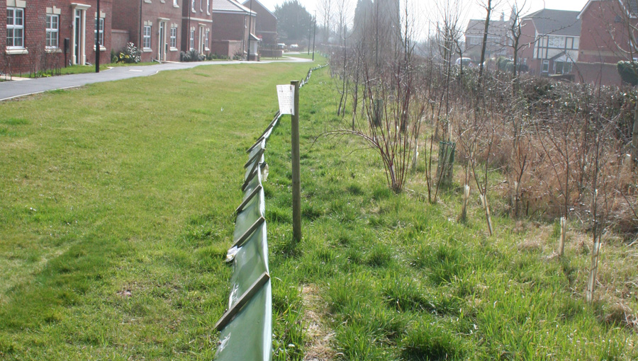 Temporary great crested newt fencing on a housing estate in Holmer