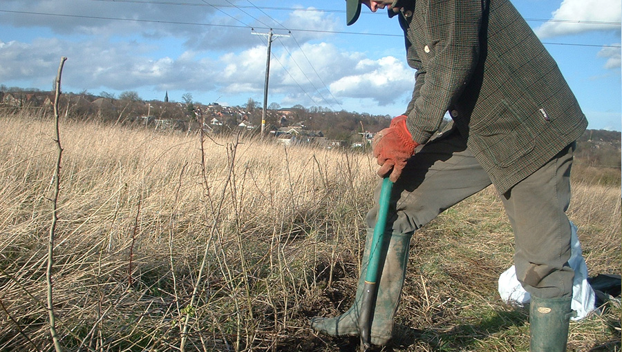 Habitat management at Rodley Nature Reserve