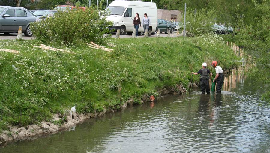 Stake installation on the River Avon