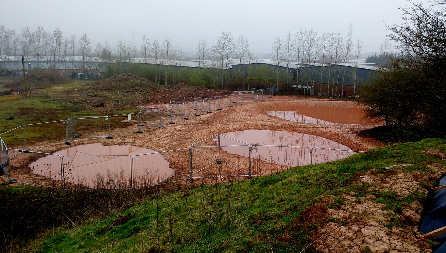 Newly constructed newt receptor ponds at Stoke Prior