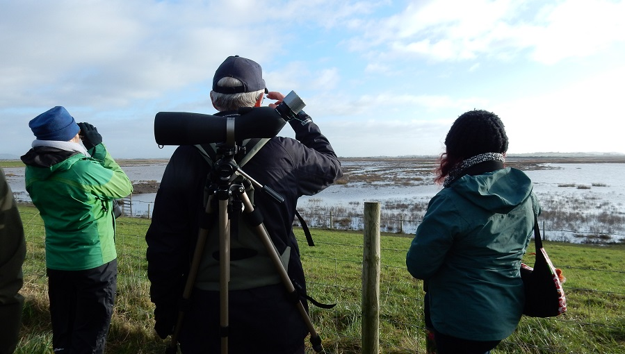 People visiting Steart Marshes January 2019