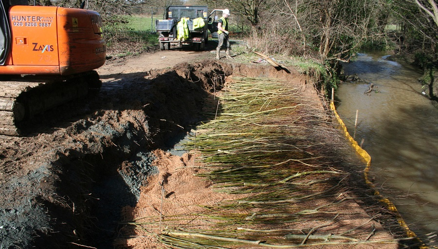 Layers of coir and willow for erosion control